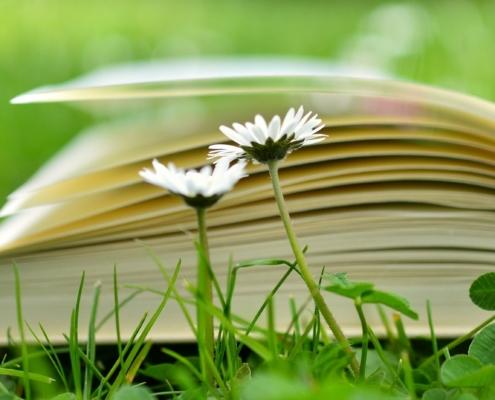 Kukkia niityllä, taustalle kirjan sivut